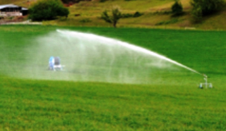 irrigation in open field